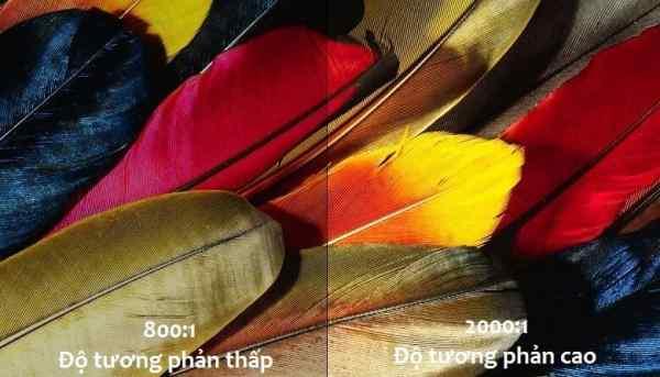Đánh giá và so sánh chi tiết máy chiếu Optoma X341 và Panasonic PT-SX320A - 7